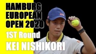 ドイツ国際テニス(ハンブルクオープン) 2020-エントリーの錦織圭