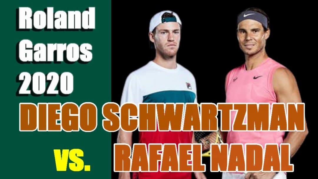 2020全仏オープンテニスの準決勝に進出したD.シュワルツマン-R.ナダル選手
